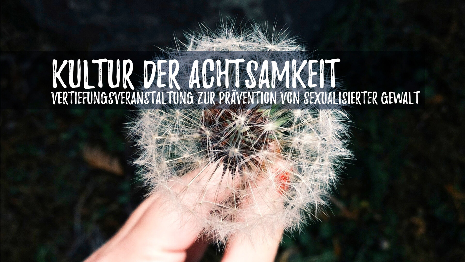 04 Achtsamkeit (c) Coley Christine/Unsplash